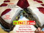 raw cakes long island raw classes long island raw lectures long island raw food long island